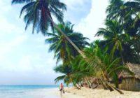 Karibi plaža i palme