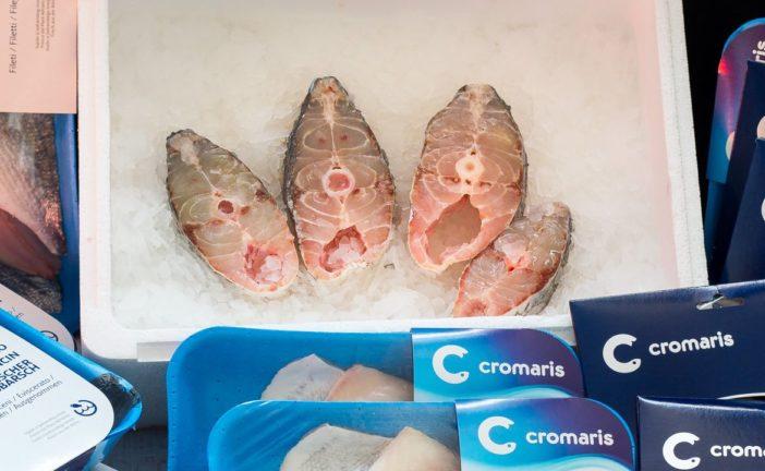 svježi odrezak ribe hame