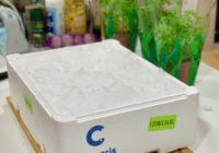 svježi brancin 600-800 grama cromaris